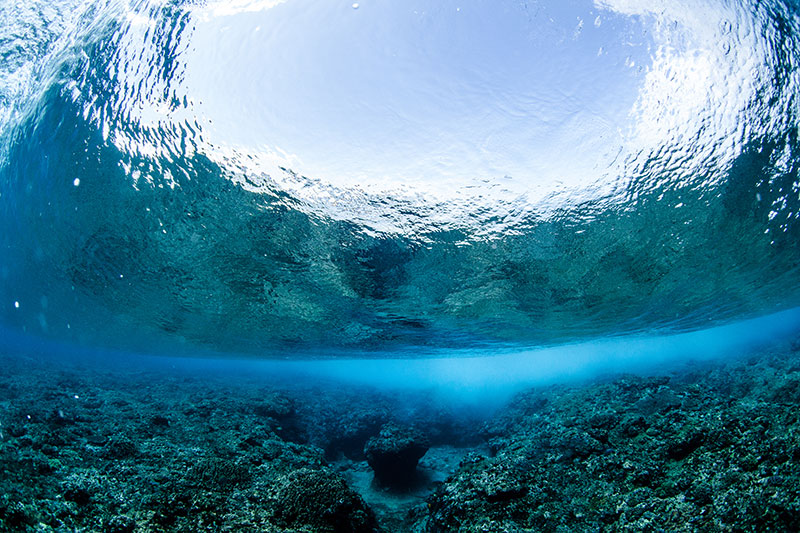shesurfs.com.au - Mikala Wilbow - lifestyle photographer - fiji girls surf trip - underwater fiji wave