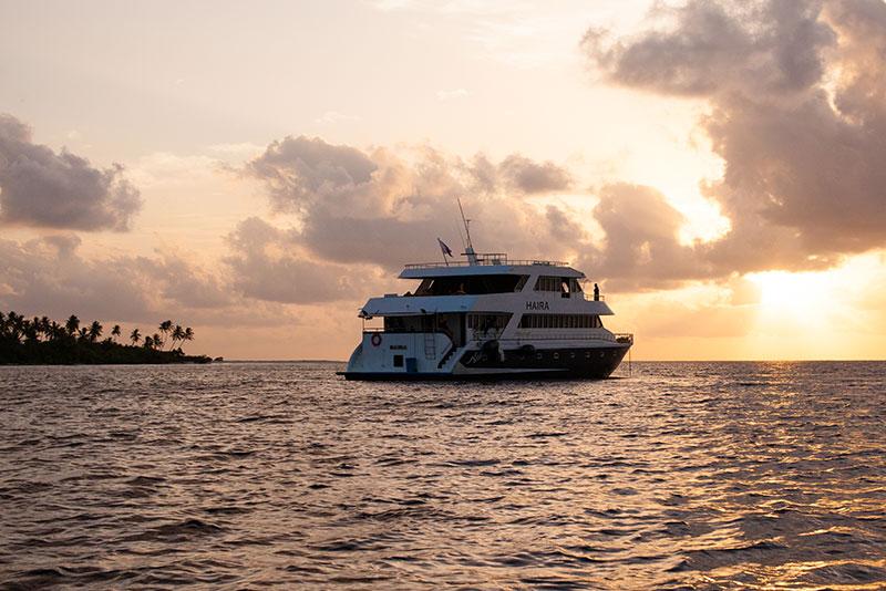 shesurfs.com.au - Mikala Wilbow - lifestyle photographer - Maldives Haira sunset