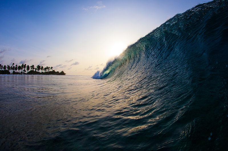 shesurfs.com.au-surf-lifestyle-photography-Foxey