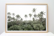 shesurfs.com.au-surf-ocean-art-photography-palm_forest__framed_print