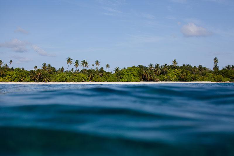 shesurfs.com.au - Mikala Wilbow - lifestyle photographer - maldives island palms