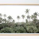 shesurfs.com.au-surf-ocean-art-photography-palm_forest__framed_print